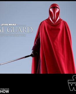 star-wars-royal-guard-sixth-scale-figure-hot-toys-902996-10